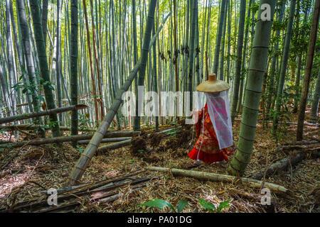 Pèlerinage de Kumano kodo. Daimon-zaka slope. Bambous. La préfecture de Wakayama. La péninsule de Kii. Région du Kansai. L'île de Honshü . L'UNESCO . Le Japon