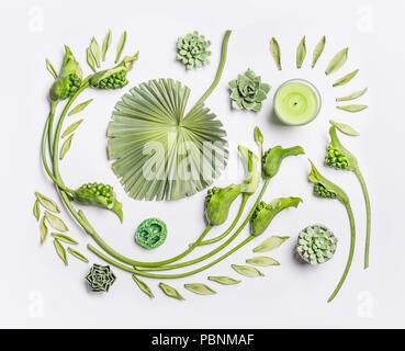 Télévision botanique coucha avec feuilles tropicales , les plantes succulentes, vert des fleurs et des bougies sur fond blanc, vue du dessus. Spa, bien-être, beauté, un relaxant