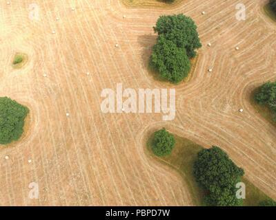 Image aérienne de bottes de foin dans un champ agricole West Sussex dans la chaleur de l'été 2018. Banque D'Images