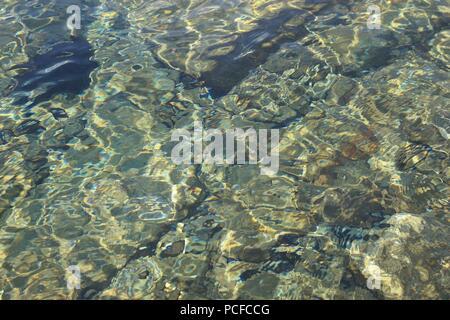 Clair comme de l'eau sur la plage. Sur la côte de la mer Adriatique en Croatie. L''île de Rab, l'Europe du Sud.
