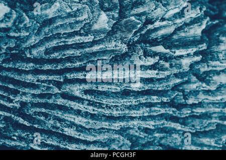 Closeup macro shot texturés de mer océan blue rock pierre ondulée avec des lignes de cavités, fond écran, tonique avec retro vintage style effet film fi Banque D'Images