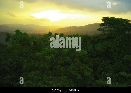 La ville de Panama, Panama, Panama. 17 mai, 2009. S'éveiller à un chœur de tropical, les toucans, les motmots et fruitcrows. Votre chambre est au niveau de la cime, pas plus de 40 pieds de l'oiseaux. Dans la fraîcheur de l'aube panaméennes, vous pouvez sentir le Panama?'S grand éveil rainforest autour de vous. Shrike-Vireos Cotingas bleu et vert, normalement les oiseaux élevés en entrevu la cime des arbres, la perche devant votre Canopy Tour suite.En haut d'un escalier dans la salle à manger, une tasse de café et pains vous attendent. S'installer à une table près de la fenêtre. Au-dessus de la forêt tropicale sans fin d'Soberani?un parc national, un navire Banque D'Images