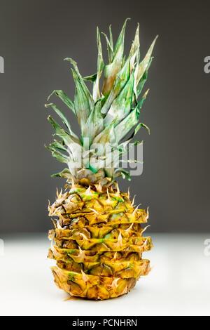 Close-up de tranches ananas sur fond gris et blanc. Vue avant de couper de façon créative l'ananas frais mûrs Banque D'Images