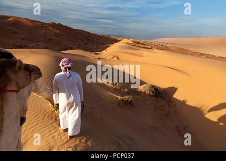 Oman, Wahiba Sands, tour de chameau dans le soir lumière Banque D'Images