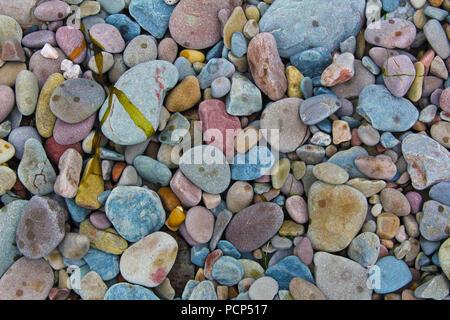 Chaque roche et de galets sur cette plage avait sa propre forme unique, de couleur et de caractère. Une incroyable variété de couleurs et de formes. Banque D'Images