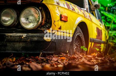 Vieille voiture accidentée dans un style vintage. Voiture jaune rouillé abandonné dans la forêt. Libre vue avant phares des épaves rouillées voiture abandonnée sur gr floue Banque D'Images
