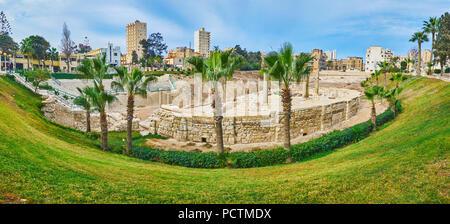 Vous pourrez vous détendre dans le parc de Ad Dikka Kom site archéologique avec une vue sur l'amphithéâtre romain antique, vu derrière les palmiers, Alexandrie, Egypte. Banque D'Images