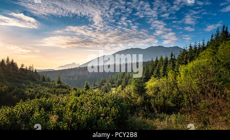Vue panoramique sur la montagne de l'humeur avec le lever du soleil au matin d'été au Parc National des Tatras, Pologne Banque D'Images