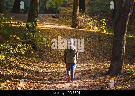 Petit bébé garçon marcher seul jusqu'à l'automne de la forêt. Chemin dans la vie. L'intimidation à l'école concept. Faire peur et d'effroi. Vue arrière Banque D'Images