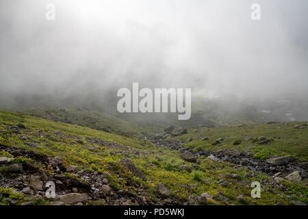 Belle prairie brumeux. Un épais brouillard sur la montagne à travers l'herbe prairie. Banque D'Images