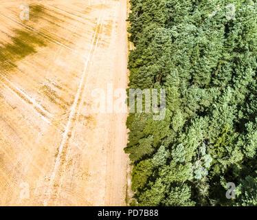 Image abstraite d'un champ de blé moissonné, divisé en une forêt frontière, au milieu. Banque D'Images