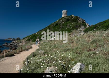 Un lieu populaire pour les visiteurs se rendant sur la pointe de la Parata, ( point de Parata ) avec un tour de défense génois construit au 15ème-16ème siècles, Banque D'Images