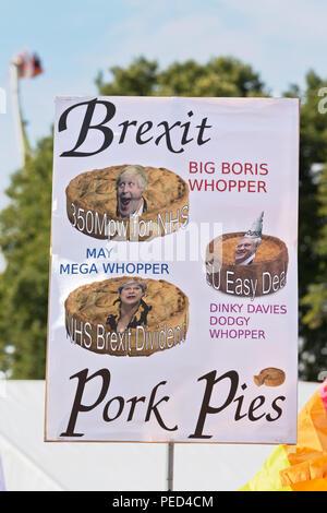 Plaque anti Brexit tenue en altitude à la Chester 2018 Pride Festival. Banque D'Images