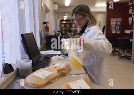 Technicien de laboratoire holding poches de plasma Banque D'Images