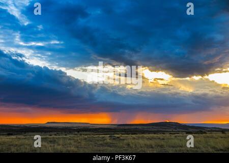 Paysage panoramique vue: gris dramatique nuages de tempête de recueillir plus d'un horizon d'orange dans la savane avec pluie imminente au coucher du soleil, Masai Mara, Kenya
