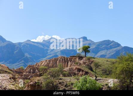 Lonely tree sur la montagne. Ciel bleu et nuages blancs au-dessus de la roche Banque D'Images