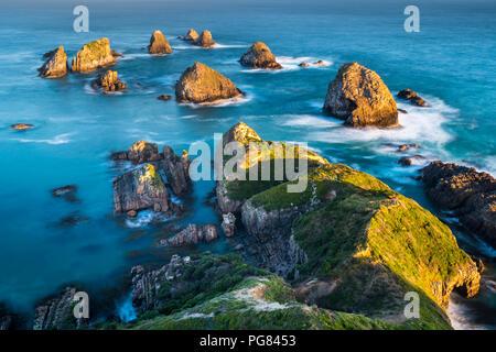 Nouvelle Zélande, île du Sud, le sud de l'itinéraire touristique, Catlins, coucher du soleil à Nugget Point Banque D'Images