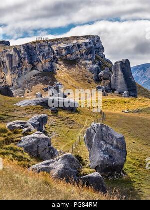 Nouvelle Zélande, île du Sud, région de Canterbury, Arthur's Pass National Park, Castle Hill Banque D'Images