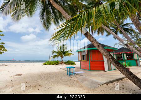 Tropical idyllique plage de sable blanc, de palmiers et d'océan turquoise de l'eau sur l'île de la Barbade dans les Caraïbes