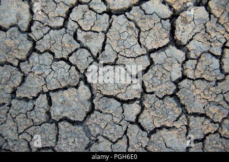 Les changements climatiques. Texture de sol sec en raison de la sécheresse. Le réchauffement climatique. Banque D'Images