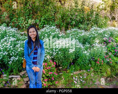 Asian Girl se tient à côté d'un jardin fleuri de Bhuping à Chiang Mai les montagnes. Photo de presse: oui