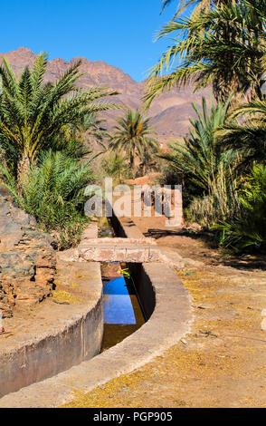 Canal d'irrigation dans un luxuriant oasis marocaine dans la vallée du Draa. La voie navigable est bleu bordé de palmiers dattiers. Montagnes en arrière-plan.