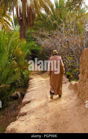L'homme en costume traditionnel marocain s'en va sur un chemin de terre sous les palmiers dans un luxuriant oasis du désert. Emplacement: La vallée du Draa.
