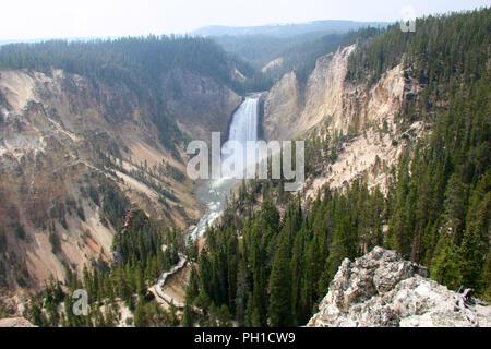 La partie supérieure de la rivière Yellowstone Falls dans le Grand Canyon du Yellowstone, le Parc National de Yellowstone, Wyoming. Banque D'Images