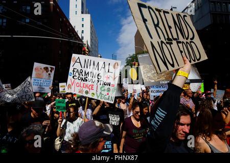 New York, NY, USA. 1er septembre 2018. Les manifestants avec une diversité d'opinions, et signe à l'homme Animal officiel Mars NYC. Banque D'Images