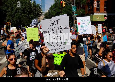 """New York, NY, USA. 1er septembre 2018. Un manifestant avec un panneau """"Donnons une chance aux pois'. Banque D'Images"""