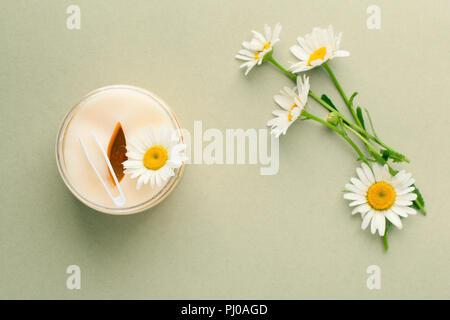 Produits de beauté à base de plantes. Yeux les à l'extrait d'herbes, fleurs de camomille, concept de produit cosmétique de plantes bio. Banque D'Images