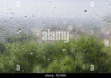 Gouttes de pluie sur la vitre Banque D'Images