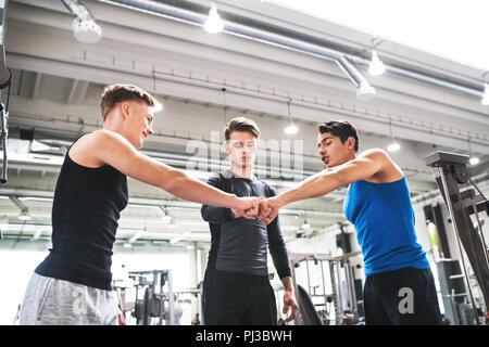 Jeunes amis debout et parler dans une salle de sport moderne, crossfit fist bump. Banque D'Images