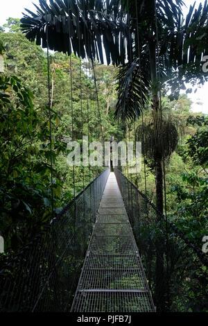 Pont suspendu au Costa Rica Banque D'Images