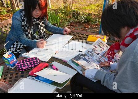 Le Japon, nord-est de Kyoto, Ohara, deux adolescentes à la mode se détendre tout en faisant leurs devoirs à une table à l'extérieur d'un magasin de proximité, à une table Banque D'Images