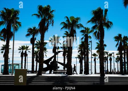 La silhouette d'un homme marche à travers les palmiers à Barcelone Banque D'Images