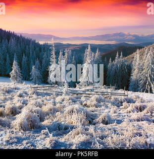 Hiver coloré lever du soleil dans les montagnes brumeuses. Instagram tonifiant. Banque D'Images
