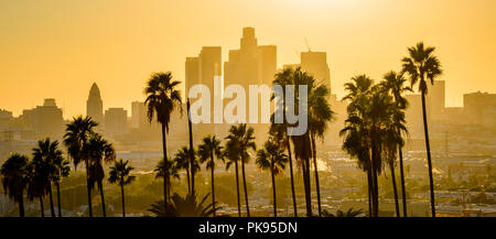 Coucher du soleil sur les toits de Los Angeles, Californie, USA.