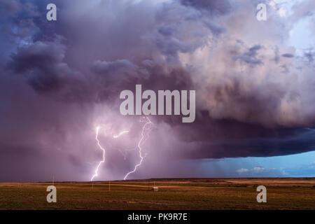 Foudre d'un orage supercellulaire, puissant orage sur le Parc National de la forêt pétrifiée de près de Holbrook, Arizona. Banque D'Images