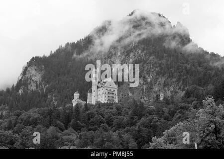 Noir Et Blanc Chateau Disney Banque D Images Photo Stock 310083368