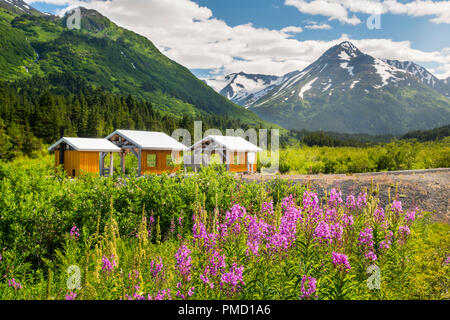 Glacier Alaska Railroad train Découverte, voyage, la Forêt Nationale de Chugach Alaska. Banque D'Images