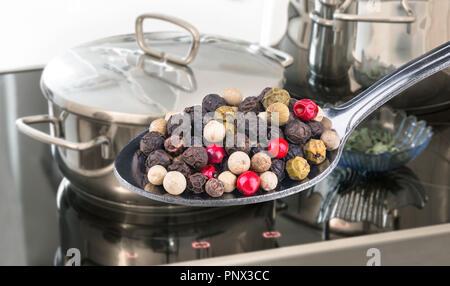Cuillère de poivre couleur épicée close-up. Piper nigrum. Gamme cuisine électrique. Pots en acier inoxydable, couvercle, bol en verre. Réflexion sur une plaque de cuisson. Banque D'Images
