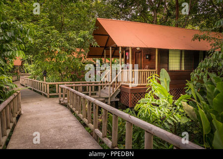 Evergreen Lodge, Guesthouse-Tortuguero Aninga National Park, Costa Rica Banque D'Images