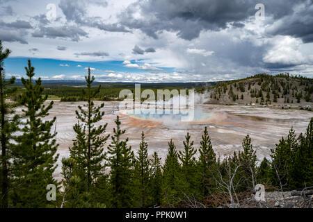 Grand Prismatic Spring dans le Parc National de Yellowstone, vus de la Fairy Falls trail surplombent, montrant l'Hot spring's arc-en-ciel de couleurs. Arbres fr Banque D'Images