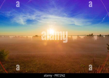 Au lever du soleil paysage de l'été. Matin brumeux sur le pré. Image filtrée: effet transformés. beau paysage lever du soleil brumeux. Banque D'Images