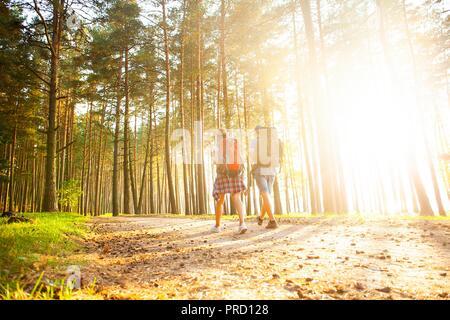 Route difficile. Beau jeune couple randonnées ensemble dans les bois tout en profitant de leur voyage.