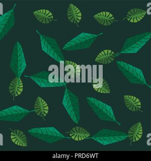 Feuilles de palmier tropical monstera green background vector illustration Banque D'Images