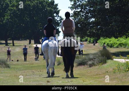Dimanche 2 juillet 2017 Richmond Park, Londres, UK. Deux cavaliers à cheval dans la région de Richmond Park et d'autres personnes à pied bénéficiant d'une belle journée d'été. Banque D'Images