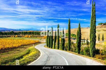 Paysage d'automne impressionnant,avec vue sur vignes et de cyprès colrful,région du Chianti, Toscane, Italie. Banque D'Images