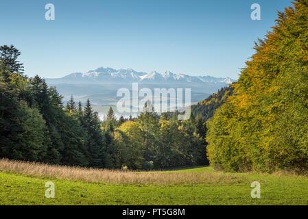 Vue sur les montagnes Tatra de Pieniny, Pologne Banque D'Images